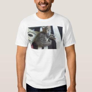 norwegian forest cat  grey tabby kitten tee shirt