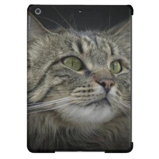 Norwegian Forest cat portrait iPad Air Cases