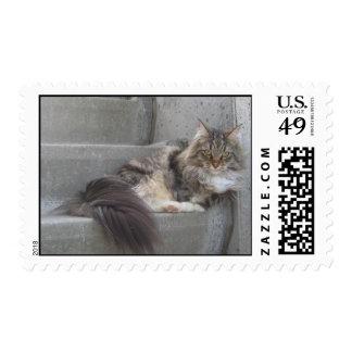 Norwegian Forest Cat Postage
