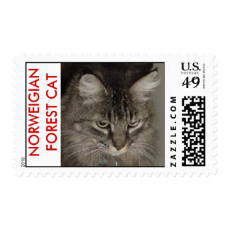 NORWEIGIAN FOREST CAT POSTAGE
