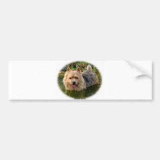 Norwich Terrier 9Y235D-087 Car Bumper Sticker