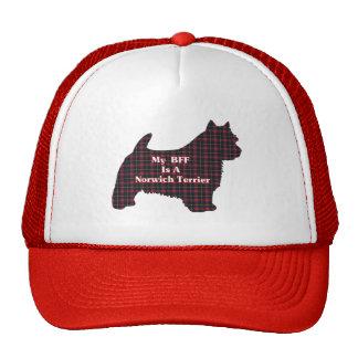 Norwich Terrier BFF Gorros