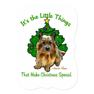 Norwich Terrier Christmas Card