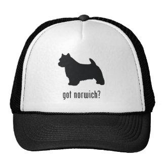 Norwich Terrier Gorro