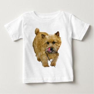 Norwich Terrier Infant T-shirt
