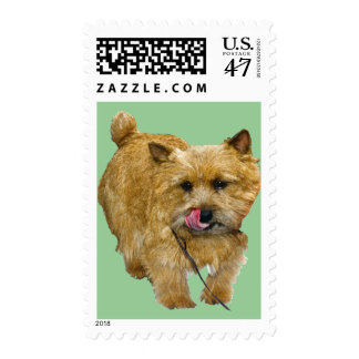Norwich Terrier US Postage