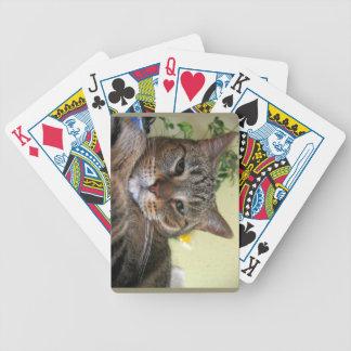 Nos no divierten barajas de cartas
