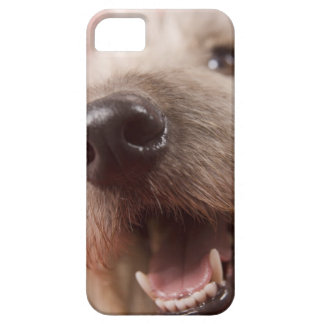 Nose of dog iPhone SE/5/5s case