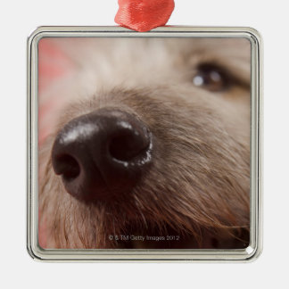 Nose of dog metal ornament