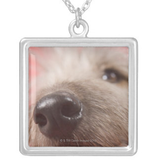 Nose of dog square pendant necklace