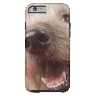 Nose of dog tough iPhone 6 case