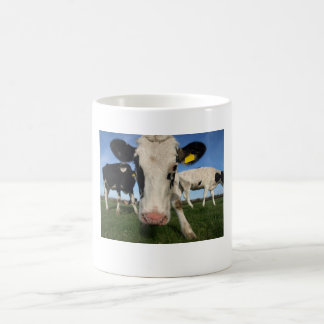 Nosey Cow Mug