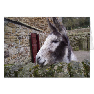 Nosey Donkey Card