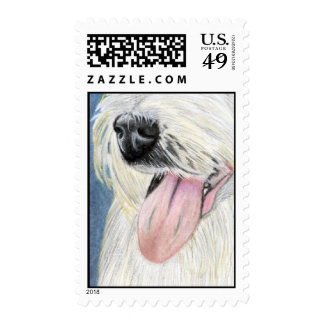 Nosey - Large Postage
