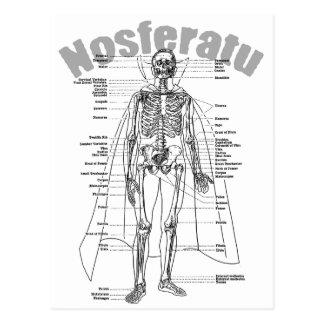 Nosferatu Postal