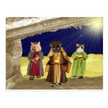 Nosotros tres gatos tarjetas postales