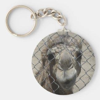 Nosy camel keychain