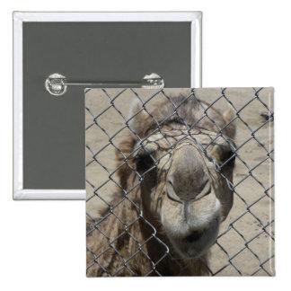 Nosy camel pin
