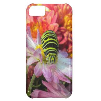 Nosy Caterpillar iPhone 5 Case