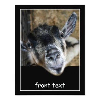 Nosy Goat Looking Out Custom Invitation