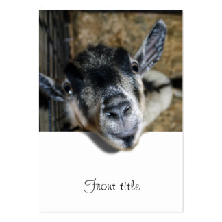 Nosy Goat Looking Out Large Business Card