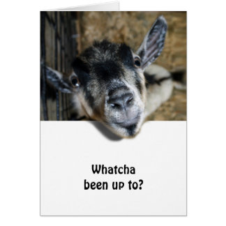 Nosy Goat Looking Up Greeting Card