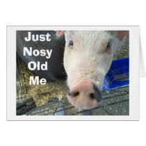 NOSY PIGS BUTS IN TO SAY=HAVE A PERFECT HOLIDAY CARD