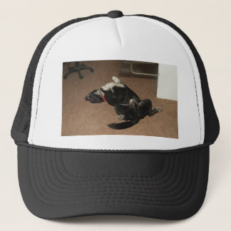 Not a Care in the World Trucker Hat