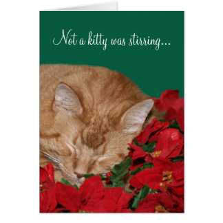 Not a kitty was stirring... card