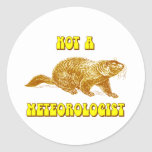 Not a Meteorologist Groundhog Classic Round Sticker