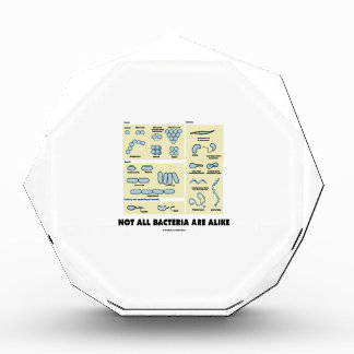 Not All Bacteria Are Alike (Bacterial Morphology) Acrylic Award