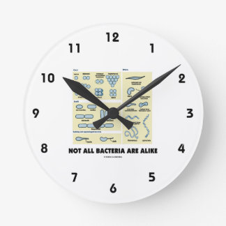 Not All Bacteria Are Alike (Bacterial Morphology) Wall Clock
