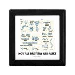 Not All Bacteria Are Alike (Bacterial Morphology) Keepsake Box