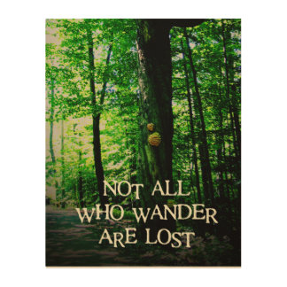 Not all who wander are lost, wood canvas photo wood wall art