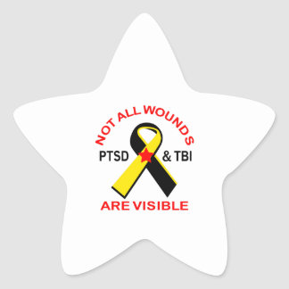 NOT ALL WOUNDS ARE VISIBLE STAR STICKER
