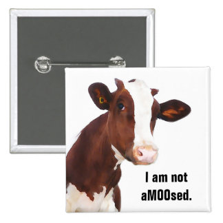 Not Amused - Funny aMOOsed Cow Joke 2 Inch Square Button
