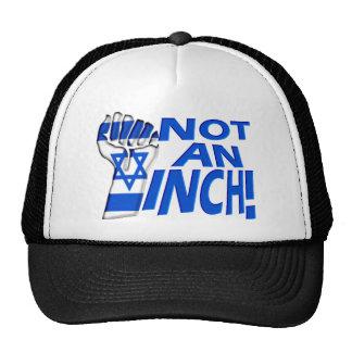 Not an Inch Mesh Hat