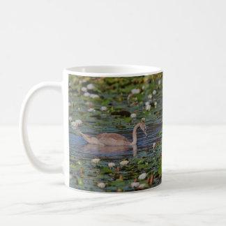Not an Ugly Duckling Coffee Mug