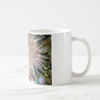 Not Anemone... A Friend Coffee Mug