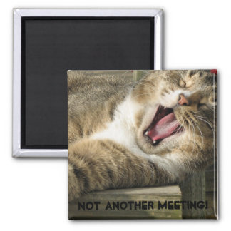 Not another meeting! 2 inch square magnet