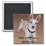 Not attitude... RATitude! 2 Inch Square Magnet