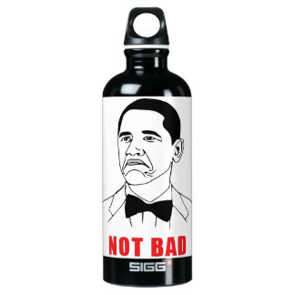 Not Bad SIGG Traveler 0.6L Water Bottle