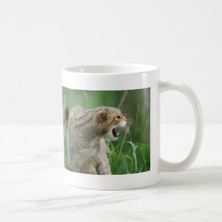 Not Called WILDcat for Nothing! mug