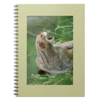 Not Called WILDcat for Nothing! notebook