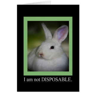 Not Disposable Animal Notecards Card