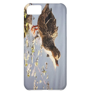 Not Duck Case For iPhone 5C