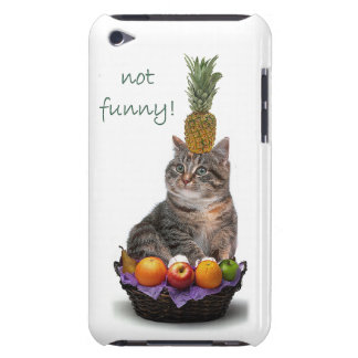 Not funny! barely there iPod cover