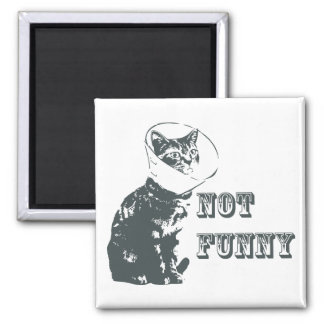 Not Funny 2 Inch Square Magnet