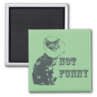 Not Funny Magnet