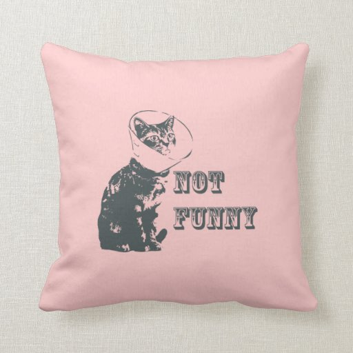 Decorative Pillows Funny : Not Funny Pillow Zazzle